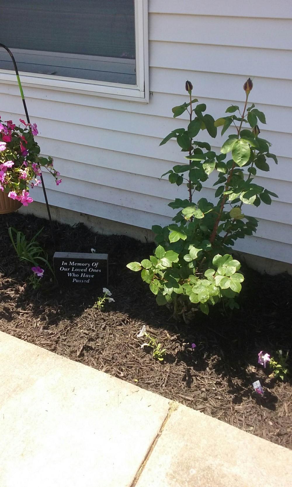 comm housing memorial garden 3