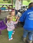 CA Petting Zoo 11