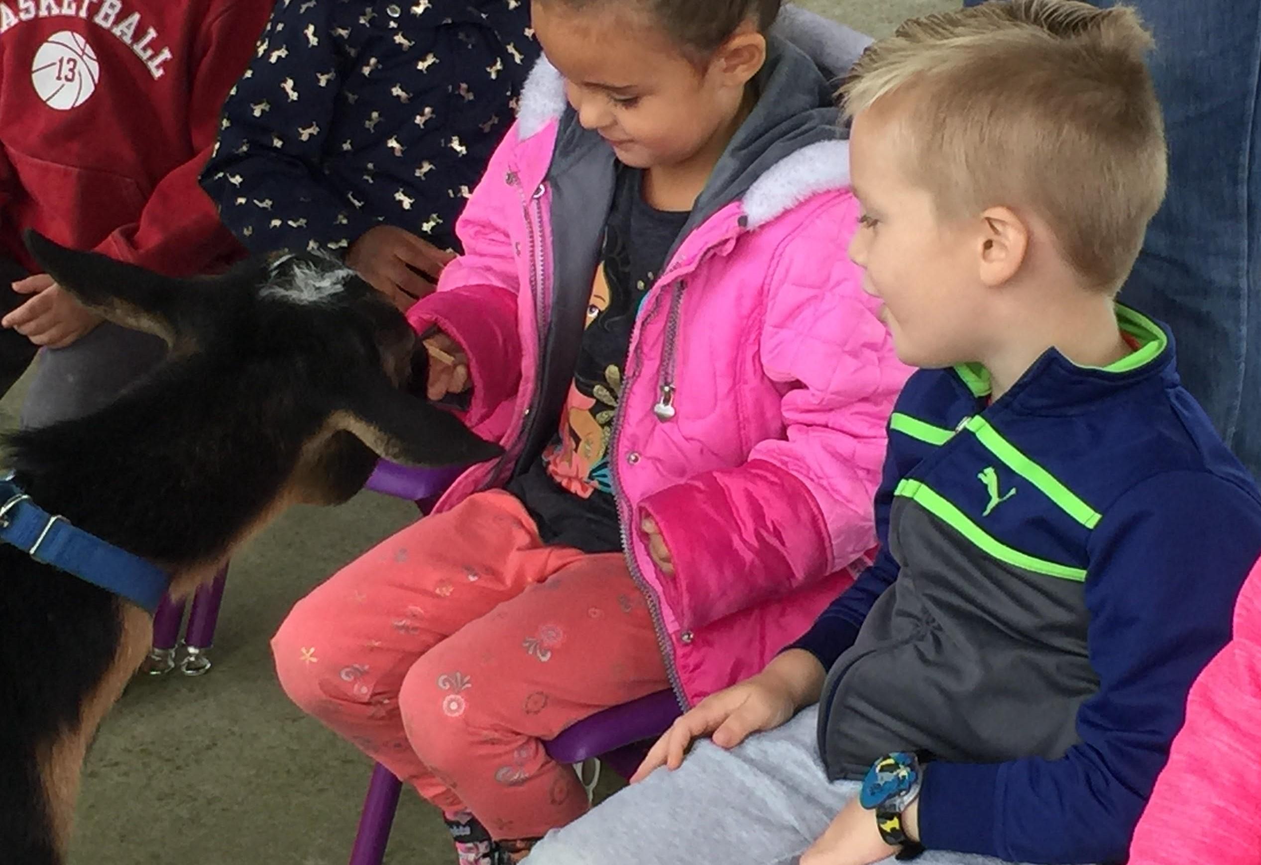 CA Petting Zoo 6
